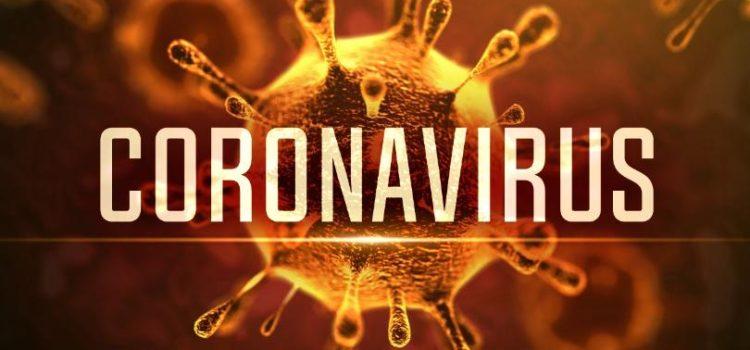 Koronavirus v ČR a BJJ